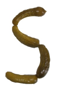 Letter S made with pickles