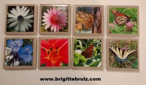 DIY picture tile coasters- butterflies and flowers
