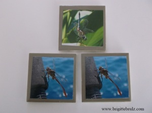 handmade dragonfly tile coasters
