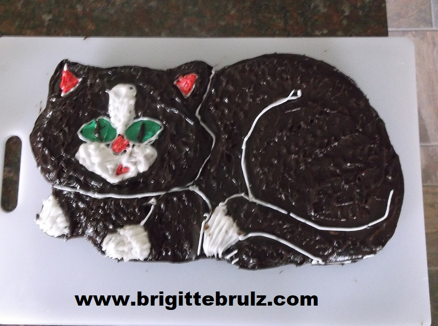 cat cake for vet themed party