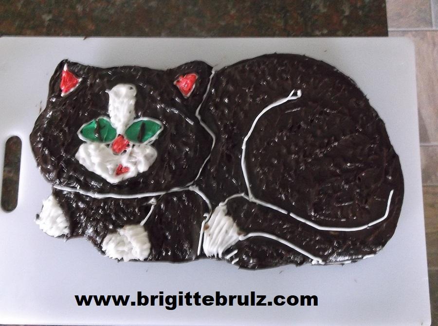cat cake for vet themed party