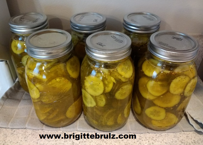 Canned Bread and Butter Pickles
