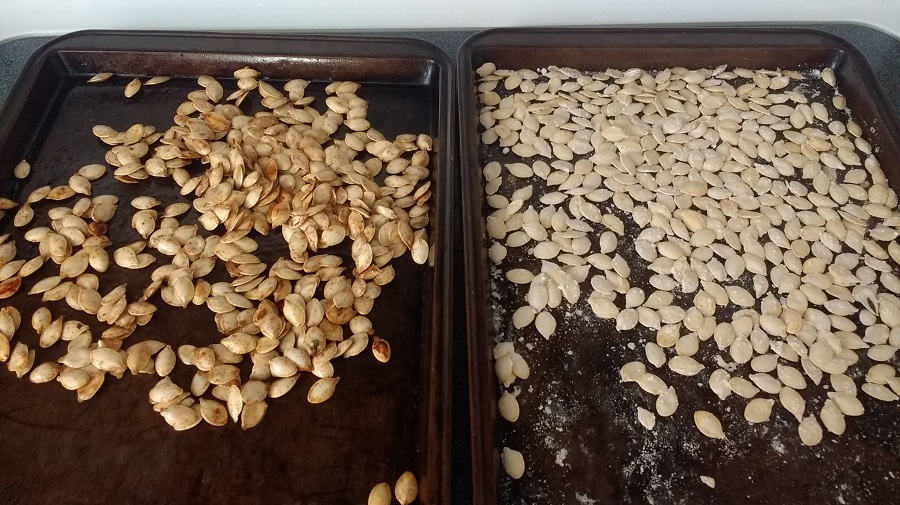 2 kinds of pumpkin seeds