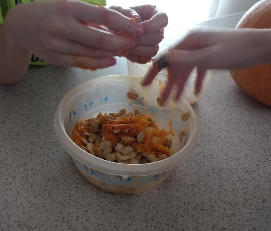 Sorting through pumpkin guts