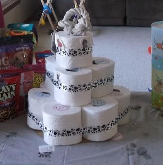 vetrinarian party tp cake