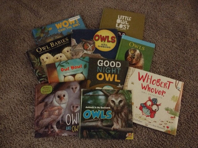 Children's books about owls