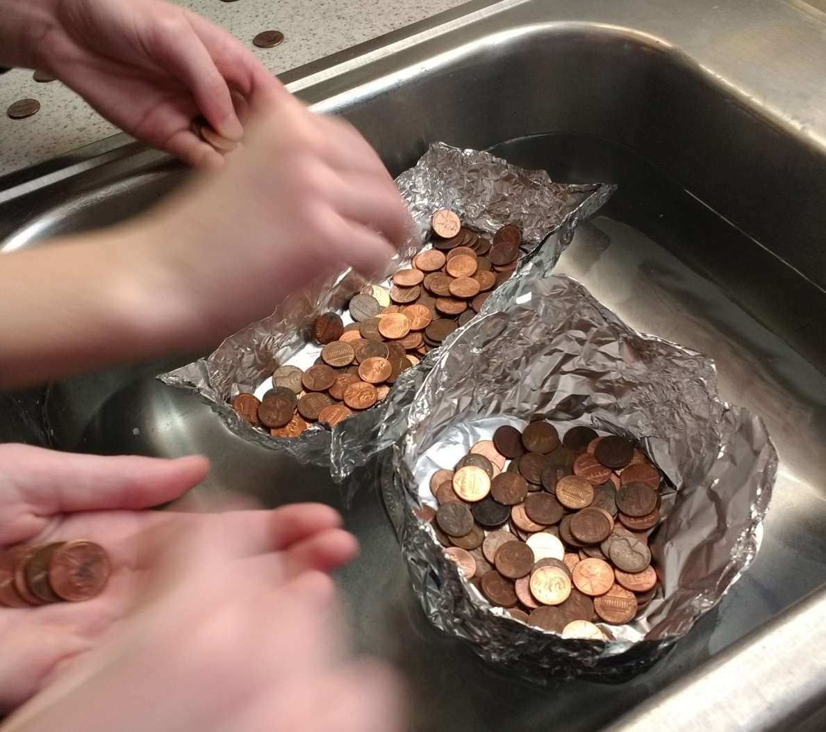 Sink and Float Counting Money President's Day Experiment
