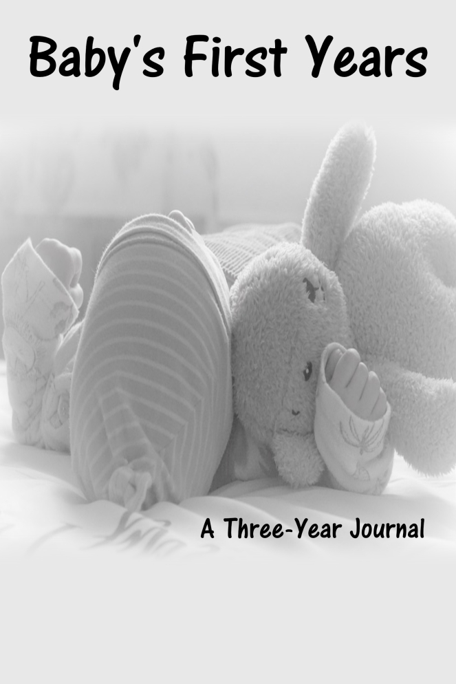 Baby's First Year Three Year Journal