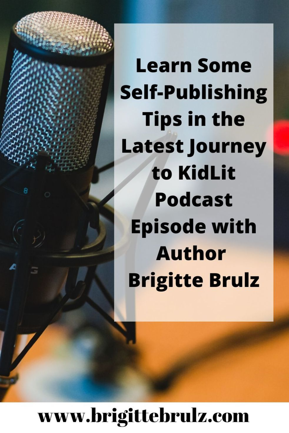 Journey to Kidlit Podcast Episode with Author Brigitte Brulz